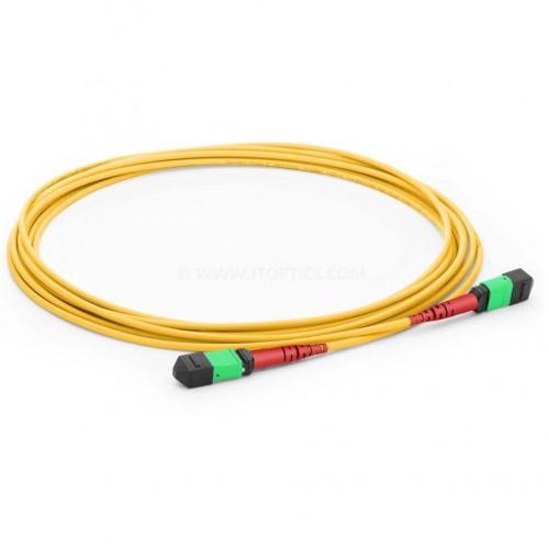 Mpo to mpo trunk cable24 fiber single mode mpo cable