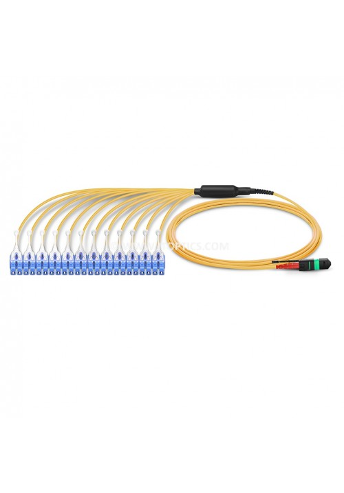 24F MTP LC HARNESS CABLE FOR SINGLE MODE CXP TO SFP MODULE